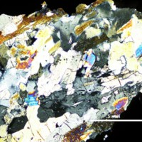 PH-7 Thin Section in XPL.