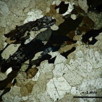 Mangerite-charnockite-thin section cross polarized light