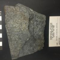 Garnet biotite schist